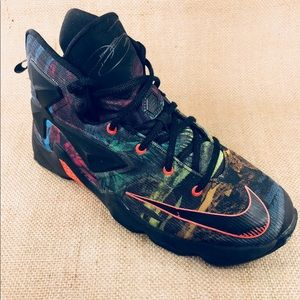 new styles 2bb67 c33dc Nike Shoes - Nike LEBRON 13 Akronite Philosophy Shoes